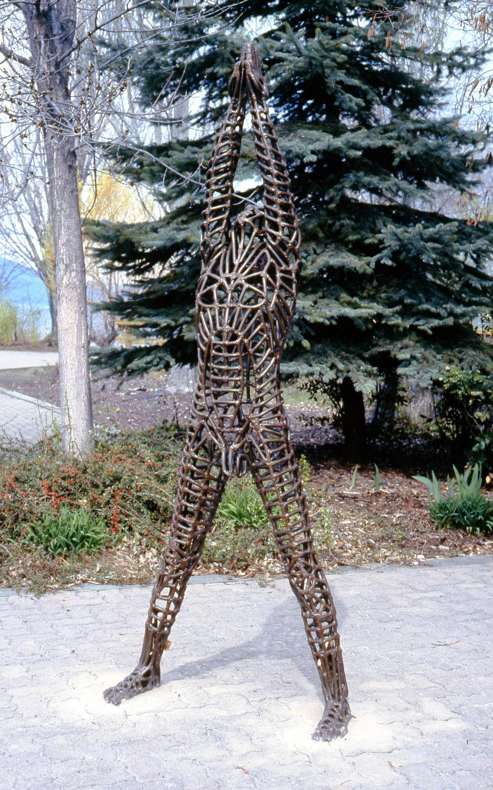 4B6-2001-0301a.jpg