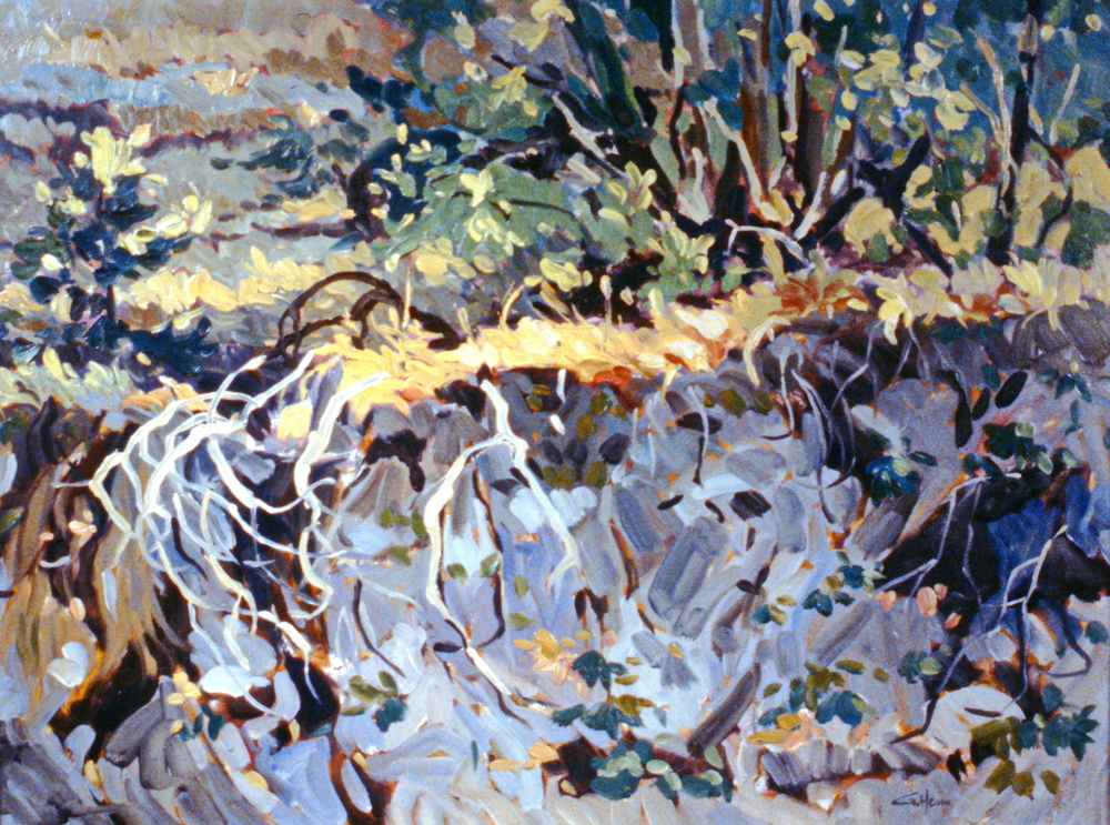 Sun Flecks , 1980, Guenter Heim, oil on panel, 61 x 45.7 cm, 1981.03.01. Gift of the artist.