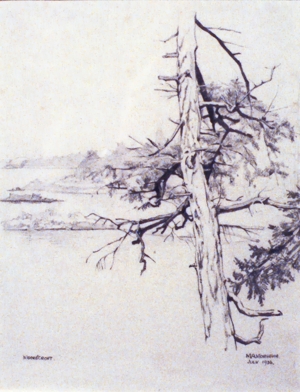Moorecroft , 1936, Marion Morham Grigsby, pencil on paper, 27.9 x 43.5 cm, 1980.04.06. Anonymous gift.