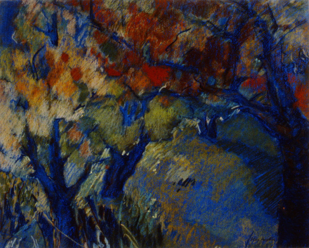 Fall Colour, Orchard Series #9 , 1990, Kay Angliss, oil pastel over silkscreen, 41 1/2 cm x 52 cm, 1994.08.01