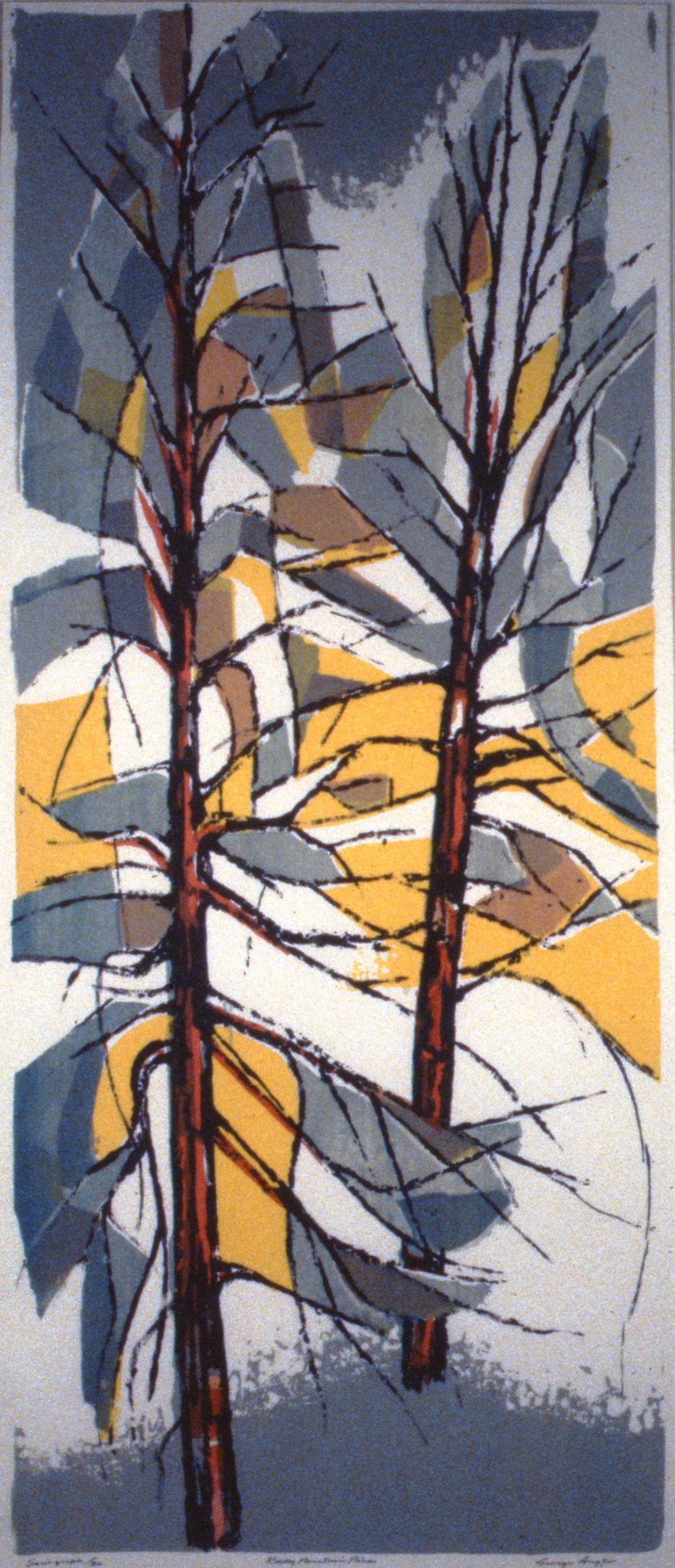 "Rocky Mountain Pines , 1962, George Angliss, serigraph, 36""x18"", 1994.13.01"