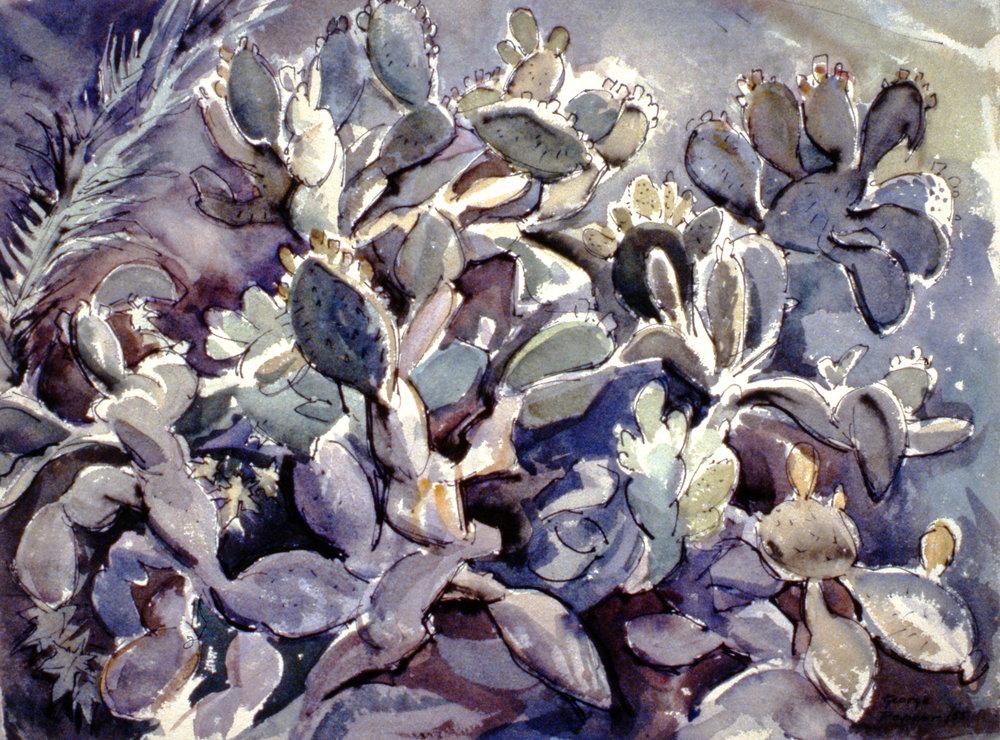 Untitled (Cactus), 1955