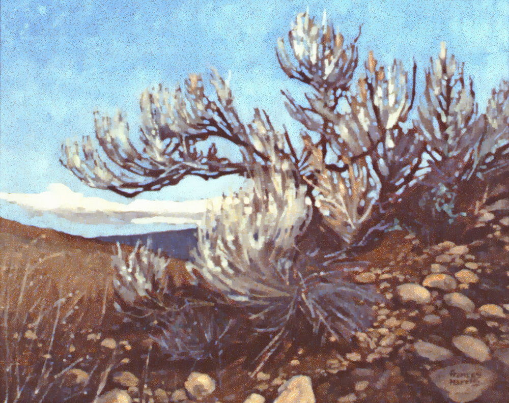 High Above The Valley , n.d., Frances Harris, oil on canvas, 39 x 49 cm, 1981.04.01. Gift of the artist.