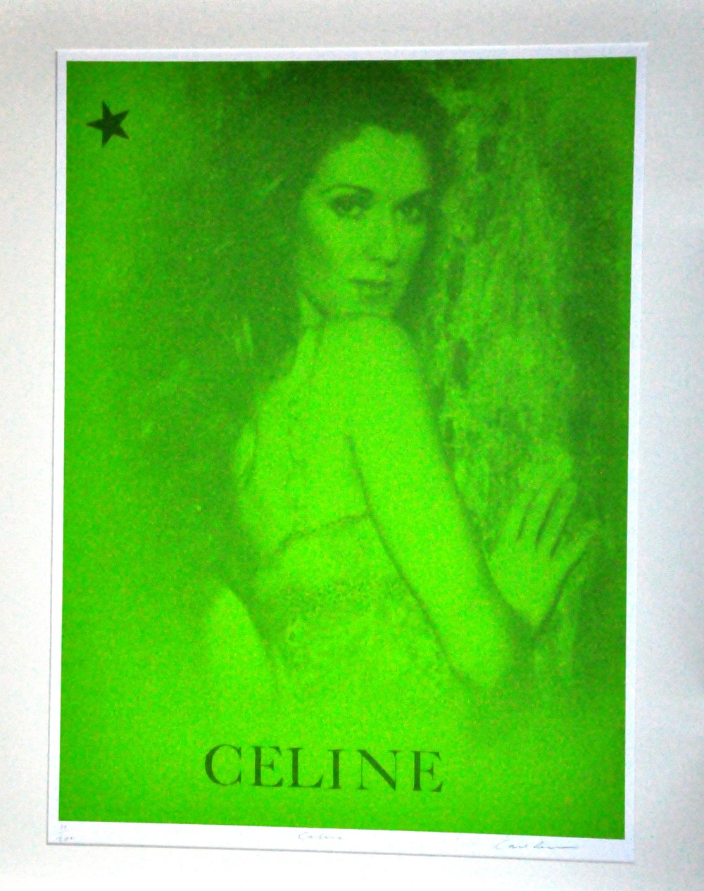 "Celine,  2000, Carl Beam, serigraph on paper, edition 17/200, 30"" x 22"", 2006.05.02, gift of the Milton Winberg Foundation"