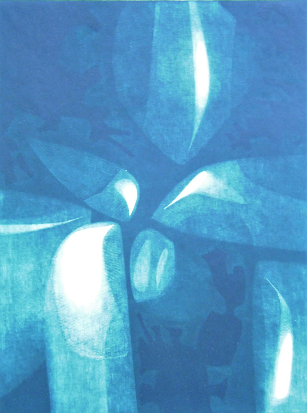 Benign and Hostile Forms,  1962/63, Judith Foster, mezzotint print, edition 30/50, 32.4 x 24.8 cm, 2006.06.01, gift of Anna Vakan