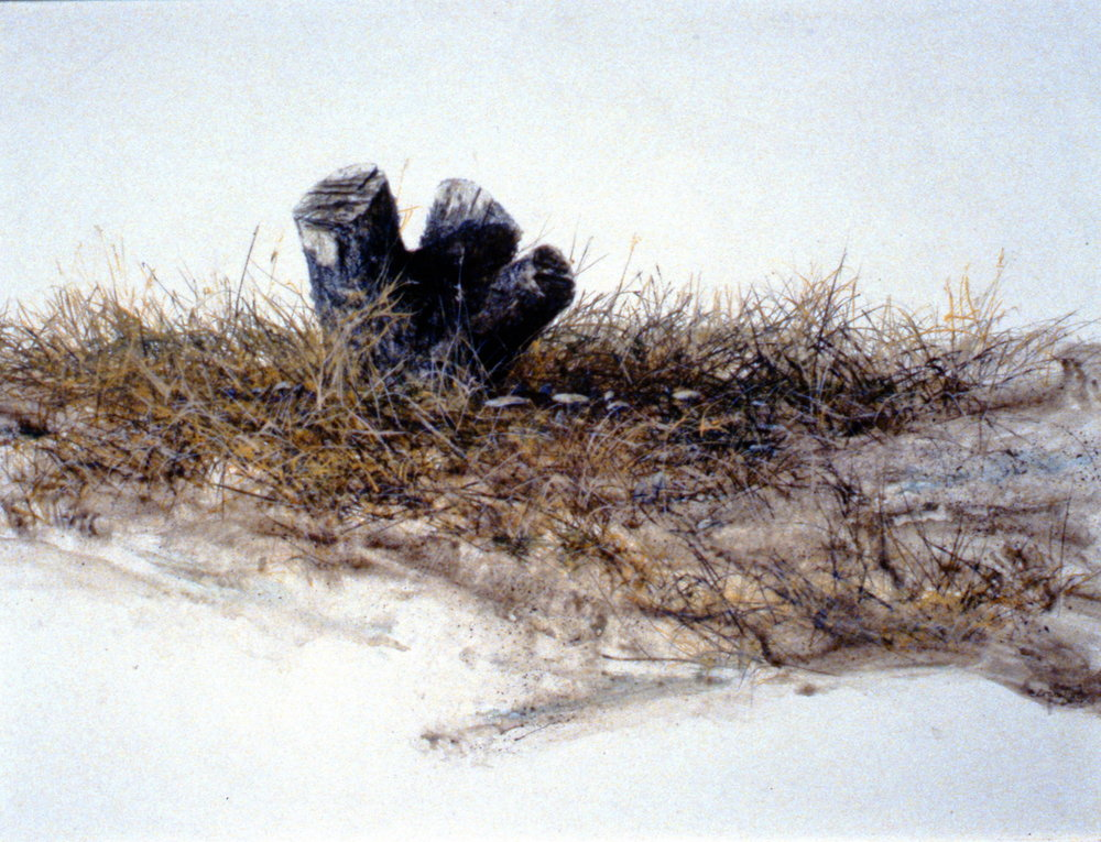 Apple Stump,  n.d., Bruce Crawford, acrylic on hardboard, 29.5 x 39.5 cm, 1995.01.04, gift of the Okanagan Mainline Regional Arts Council.