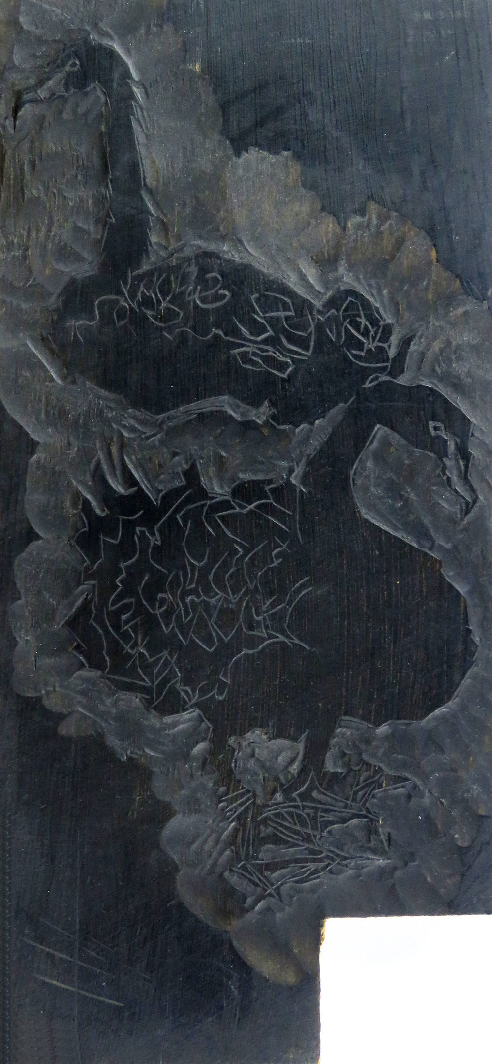 Black Swans woodcut block.jpg
