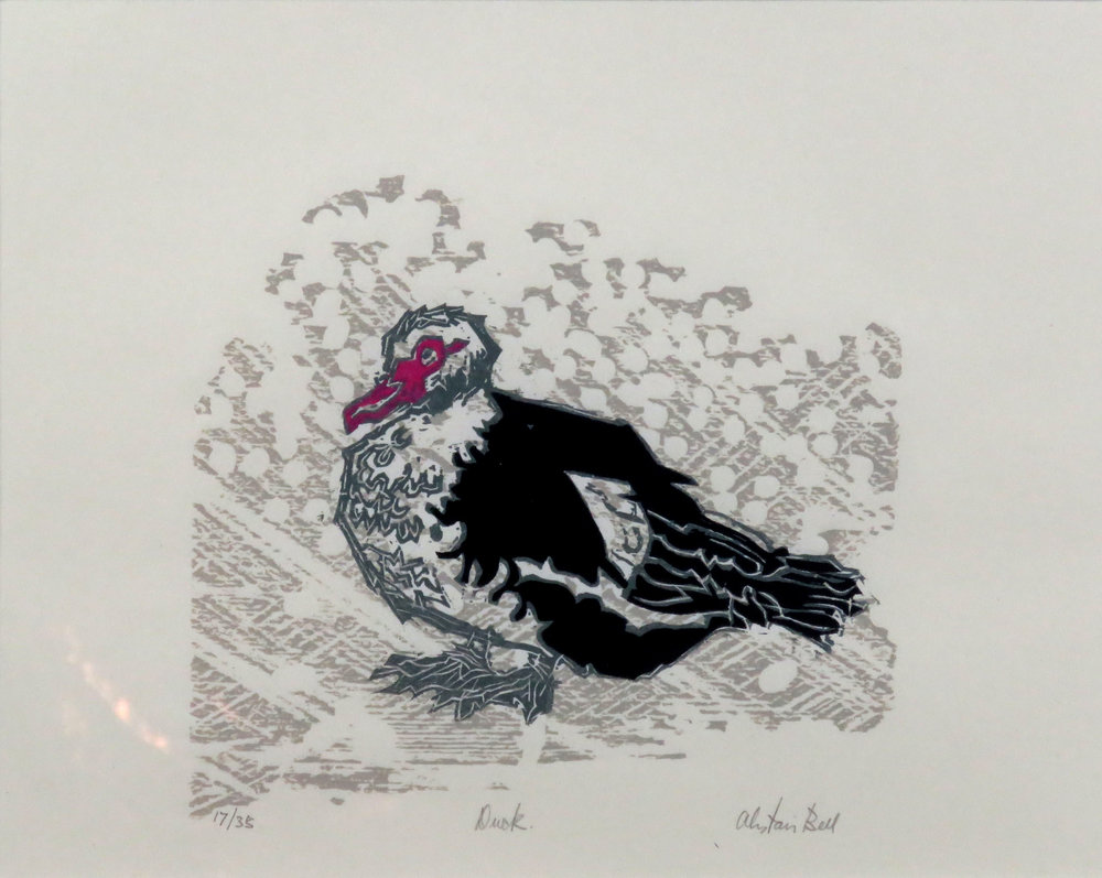 Duck colour woodcut.jpg
