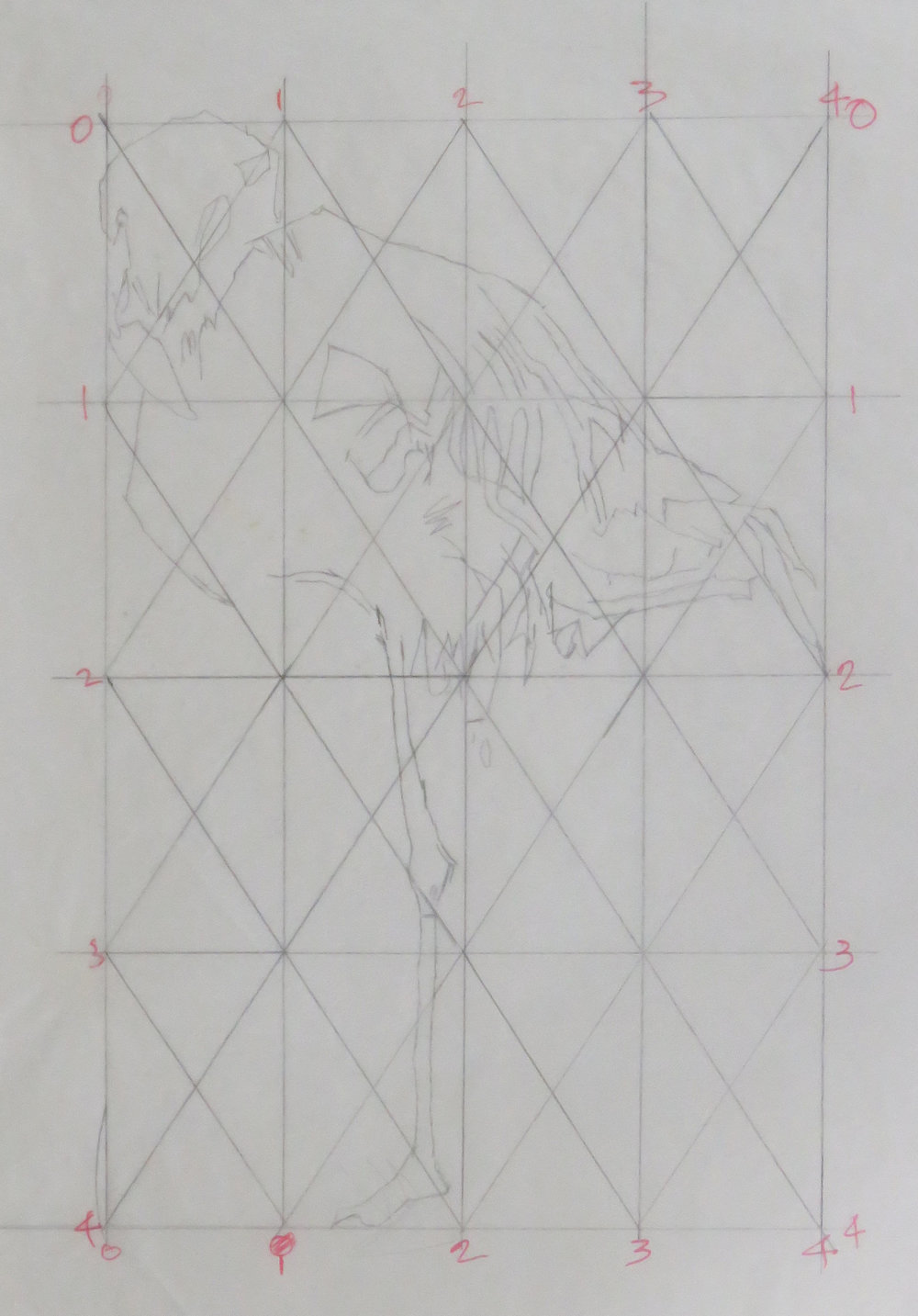 Flamingo colour drypoint gridded study.JPG