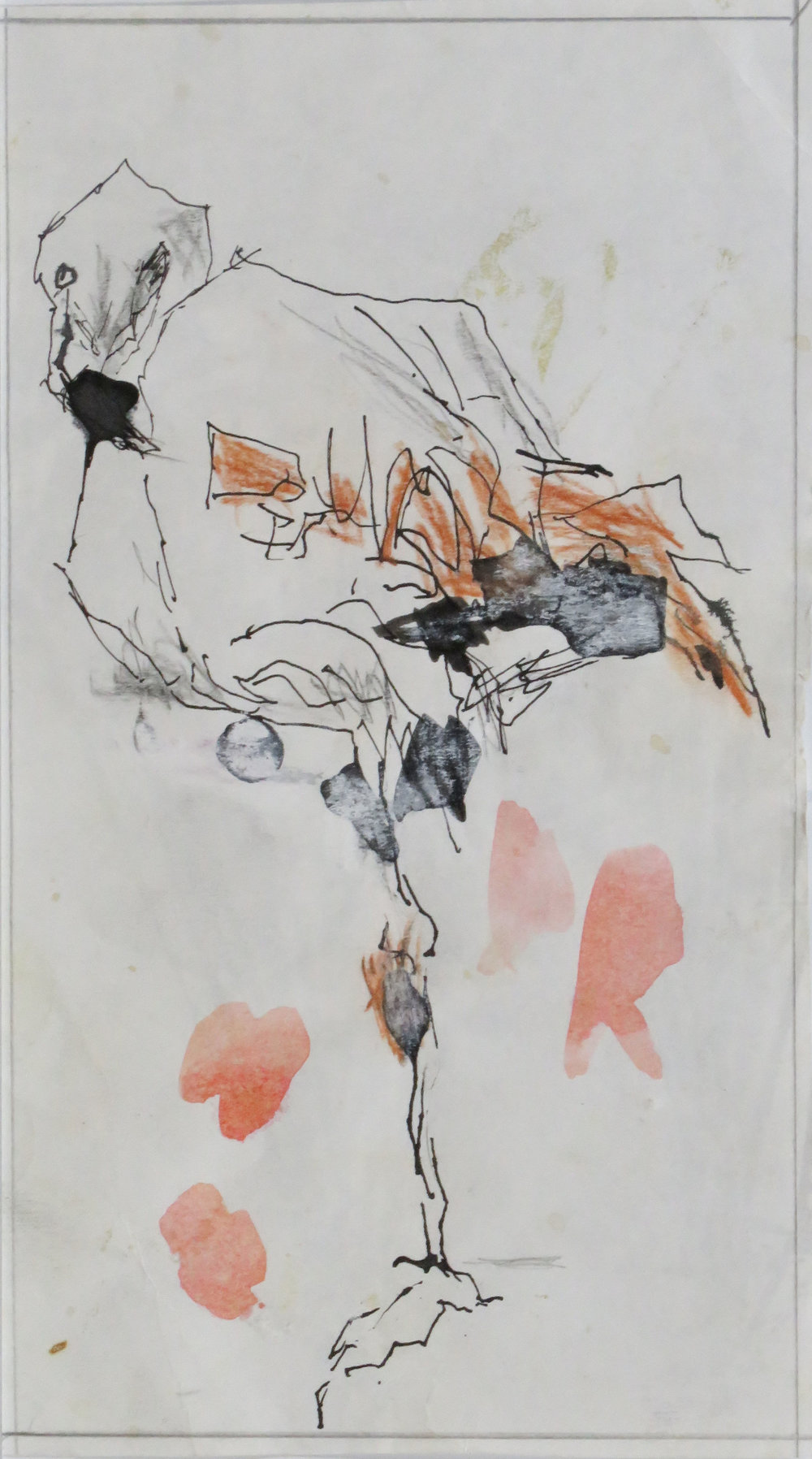 Flamingo colour drypoint study.JPG
