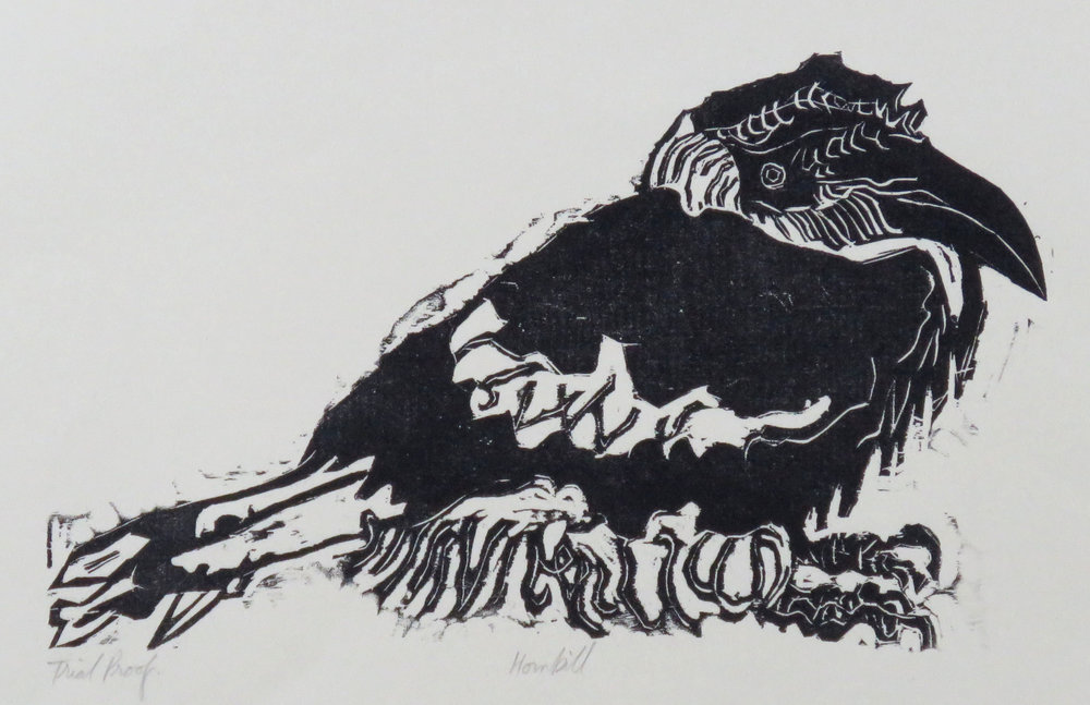 Hornbill woodcut trial proof.JPG