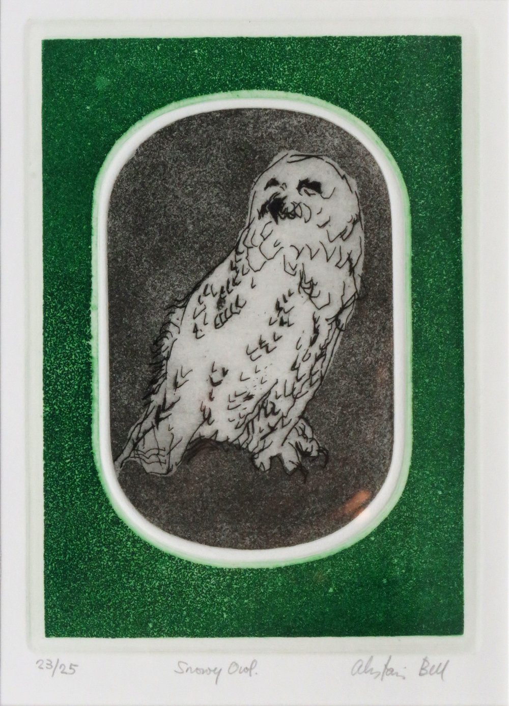 Snowy Owl colour etching, aquatint.jpg