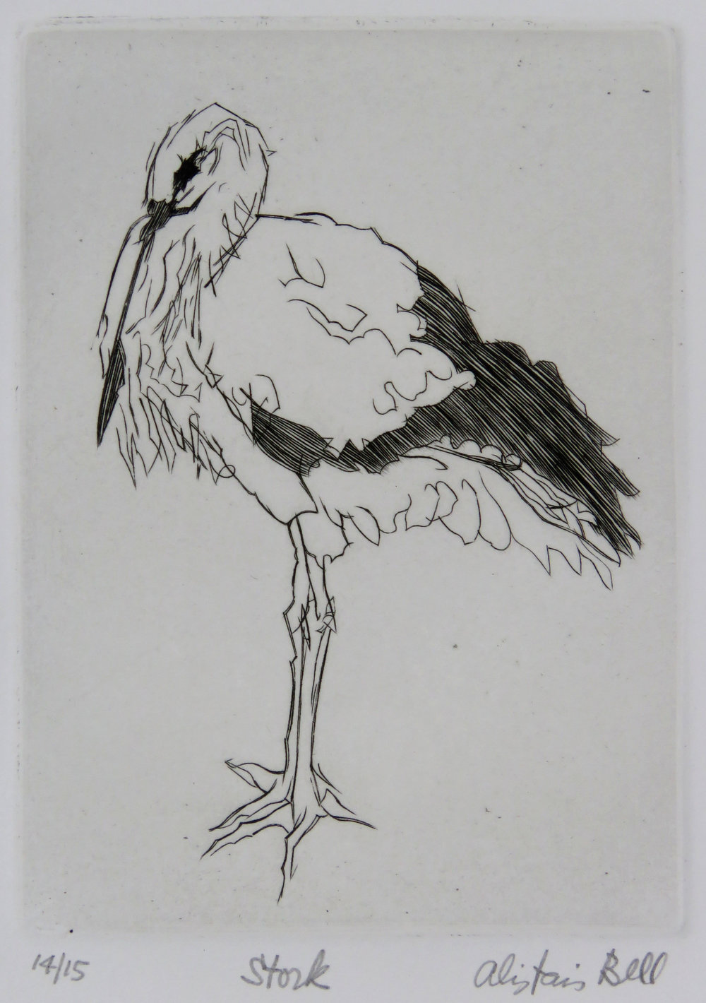 Stork drypoint.jpg