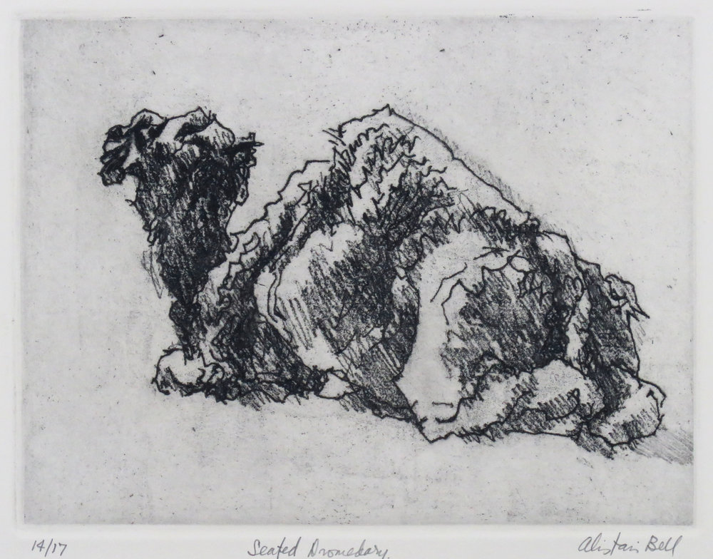 Seated Dromedary soft-ground etching.JPG