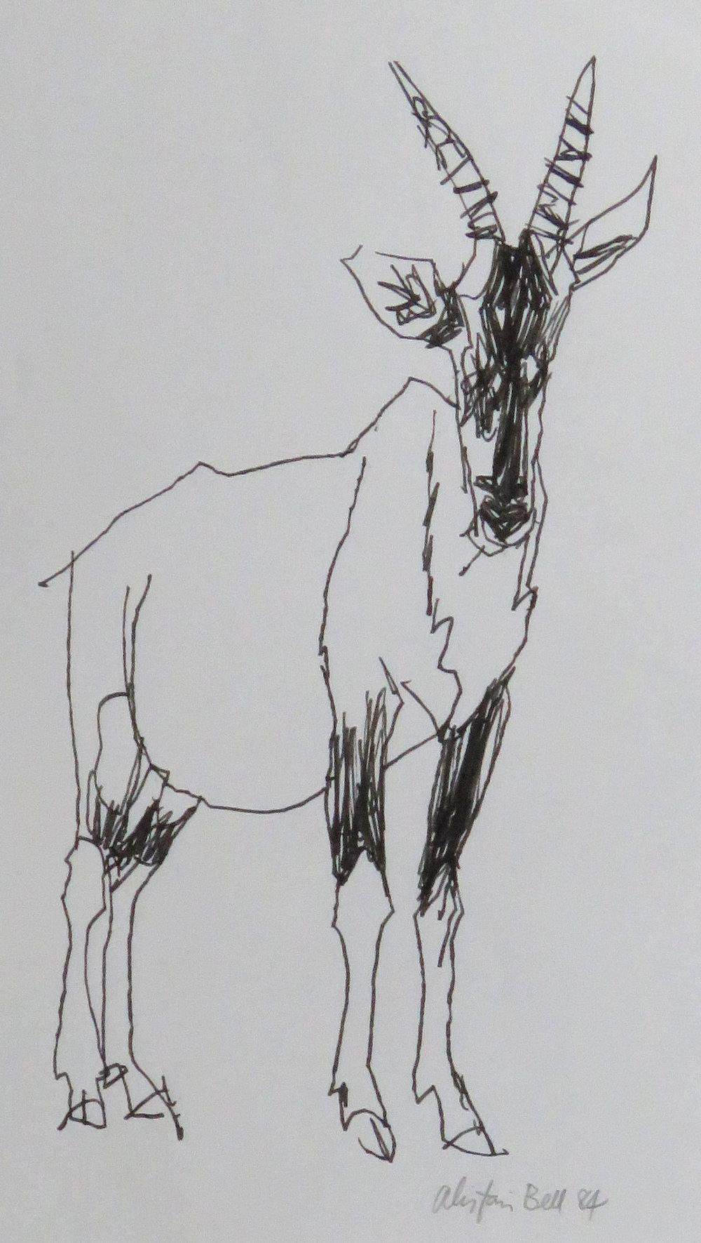 Topi, standing 7-84 pen & ink.JPG