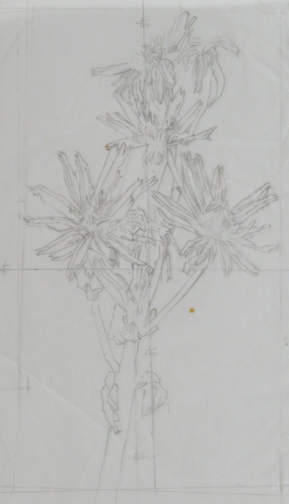 Autumn Flowers III colour drypoint study.JPG