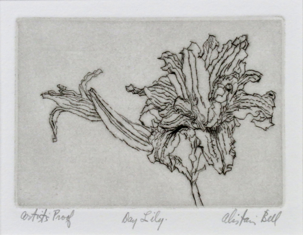 Day Lily drypoint.jpg