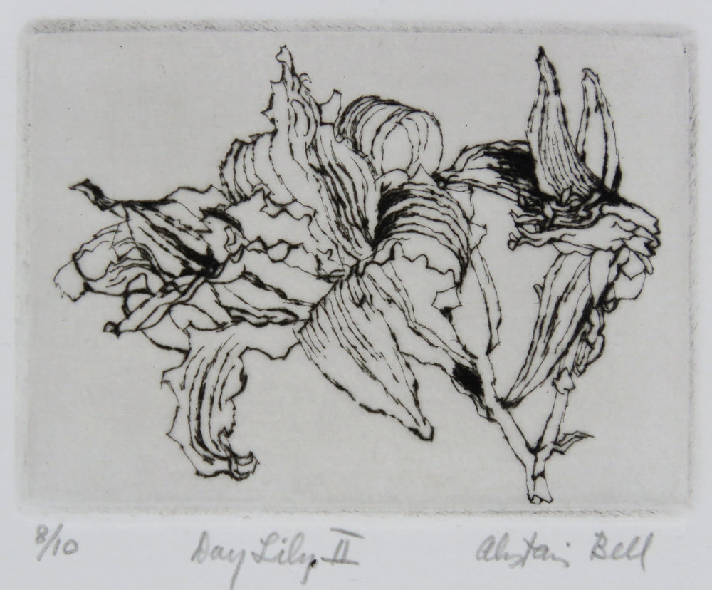 Day Lily II drypoint.jpg