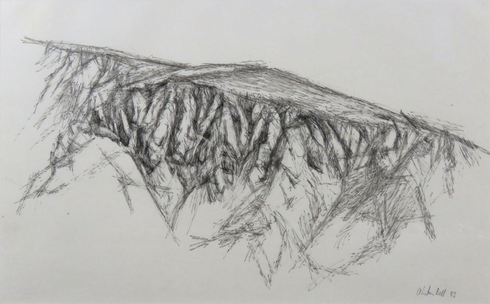 Eroded Landscape II 15-82 carbon pencil.jpg