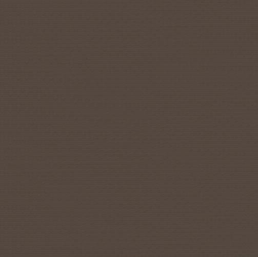 244539 4999, Bronze