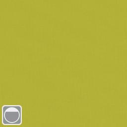 Colour 3876