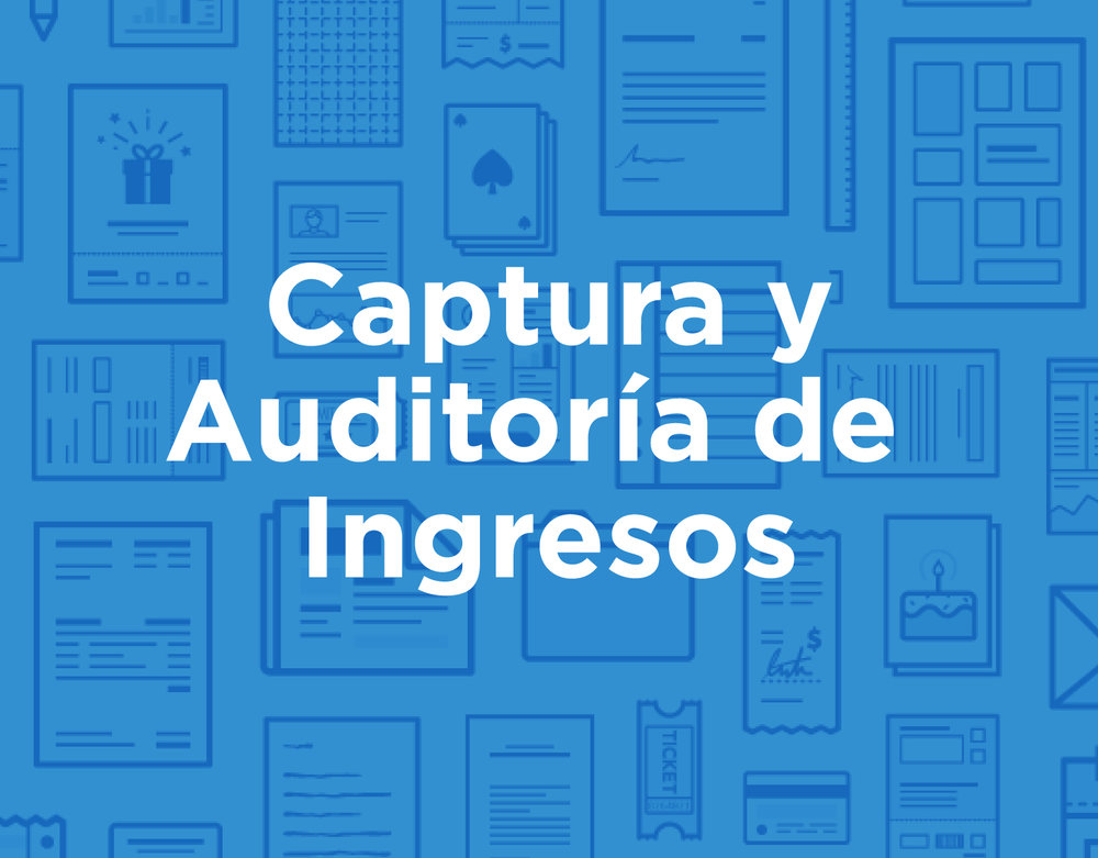 icon_products_spa_Captura-Auditoria-Ingresos.jpg