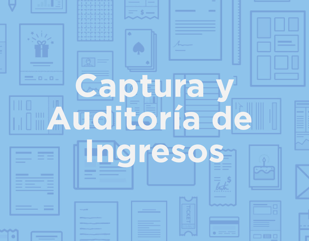 icon_products_spa_Captura-Auditoria-Ingresos_selected.jpg