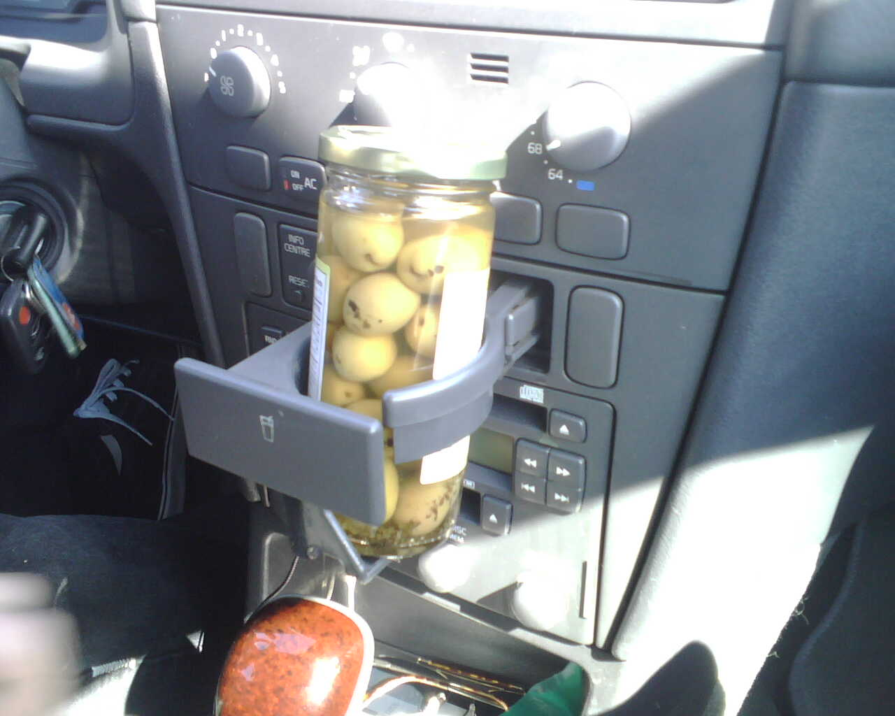 sharpe got us from the airport. he likes olives.