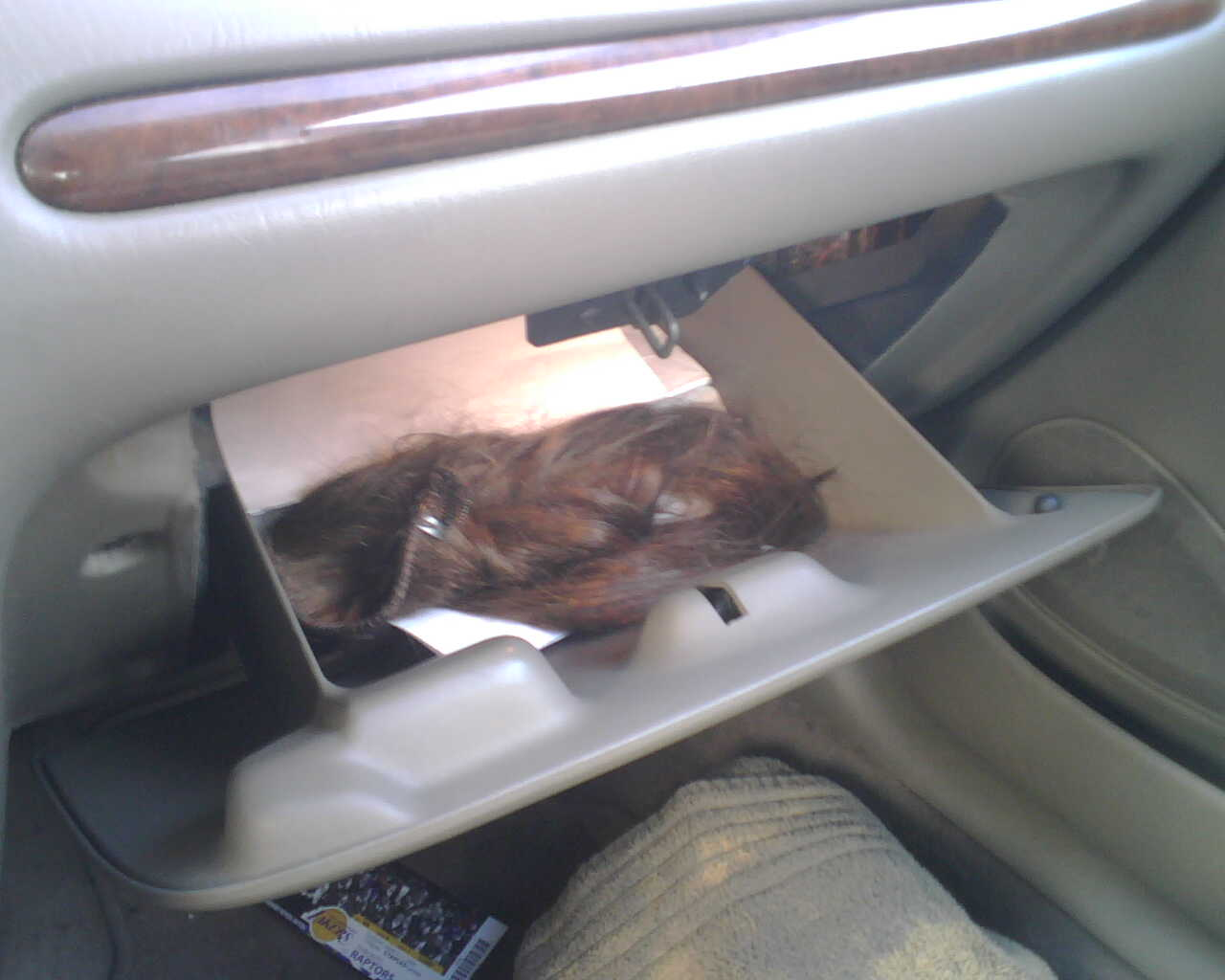 emergency extensions