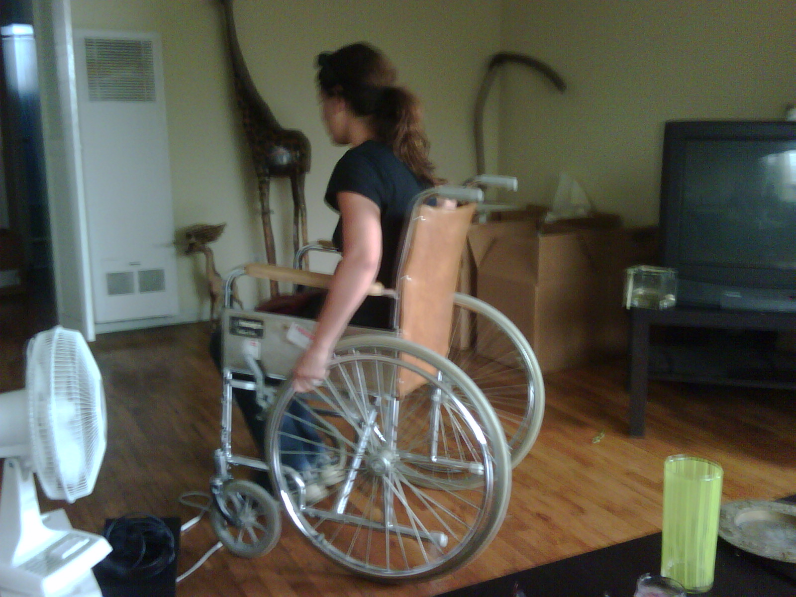 beth rented a wheelchair for me one day
