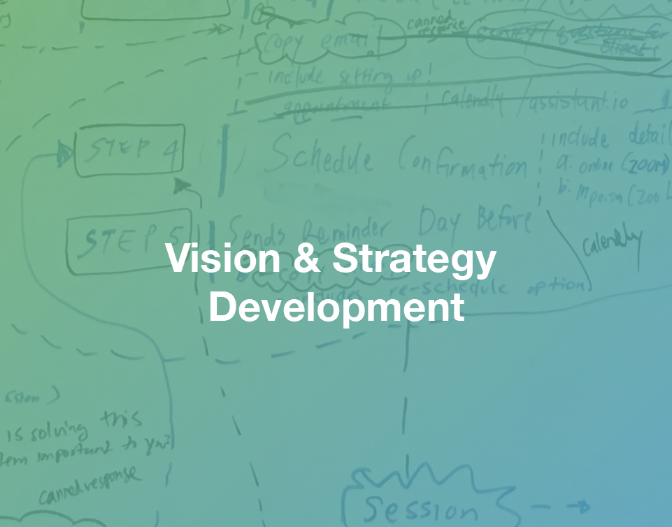 Vision strategy