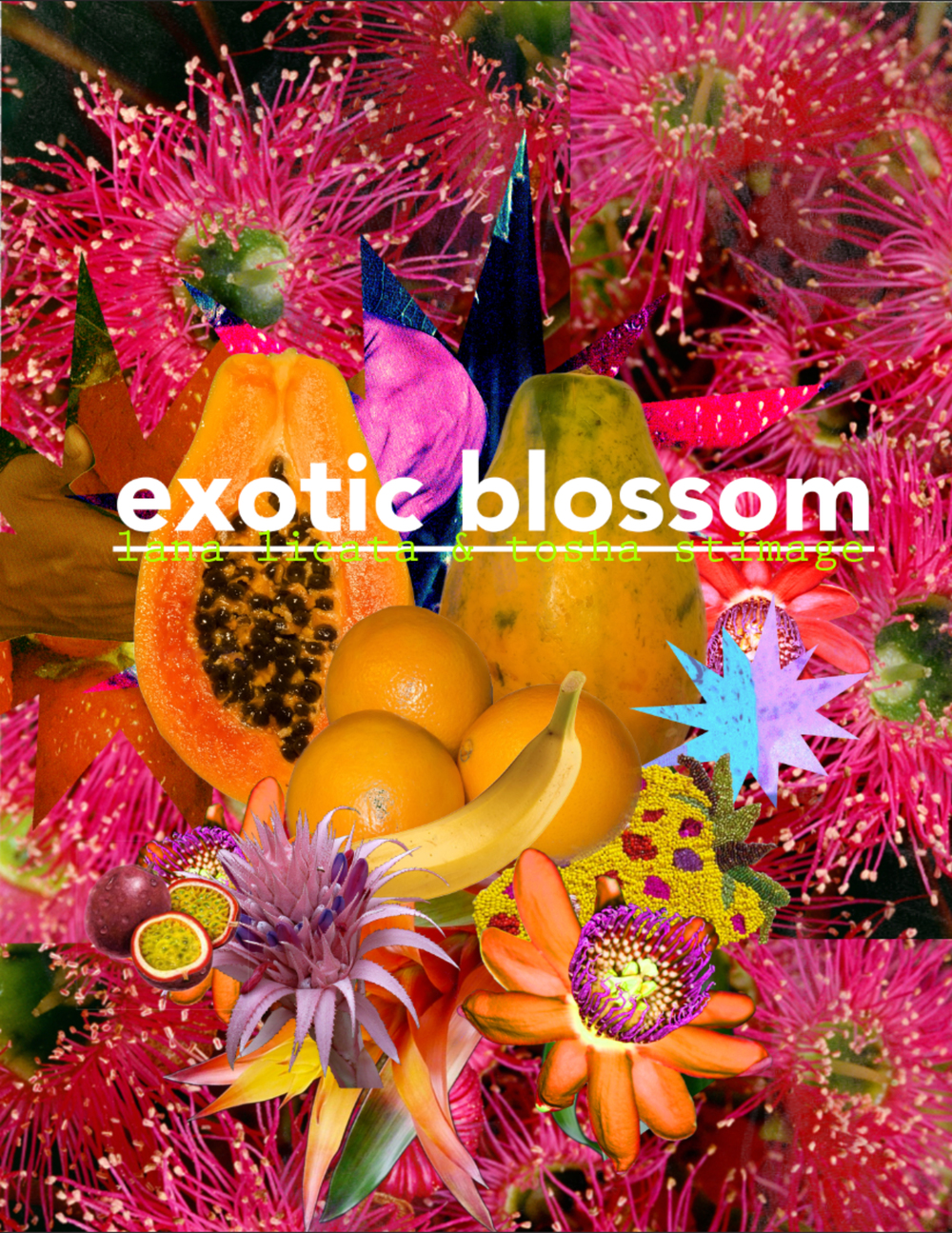 EXOTIC BLOSSOM Opening Reception Friday May 27, 2016 7-10pm On view 5.27-6.24  Exotic Blossom is a dual show by Lana Licata and Tosha Stimage. The show is a celebration of material, color, and subsequent form. Quality Gallery 3040 Martin Luther King Jr. Way Oakland, Ca 94609 MORE INFO