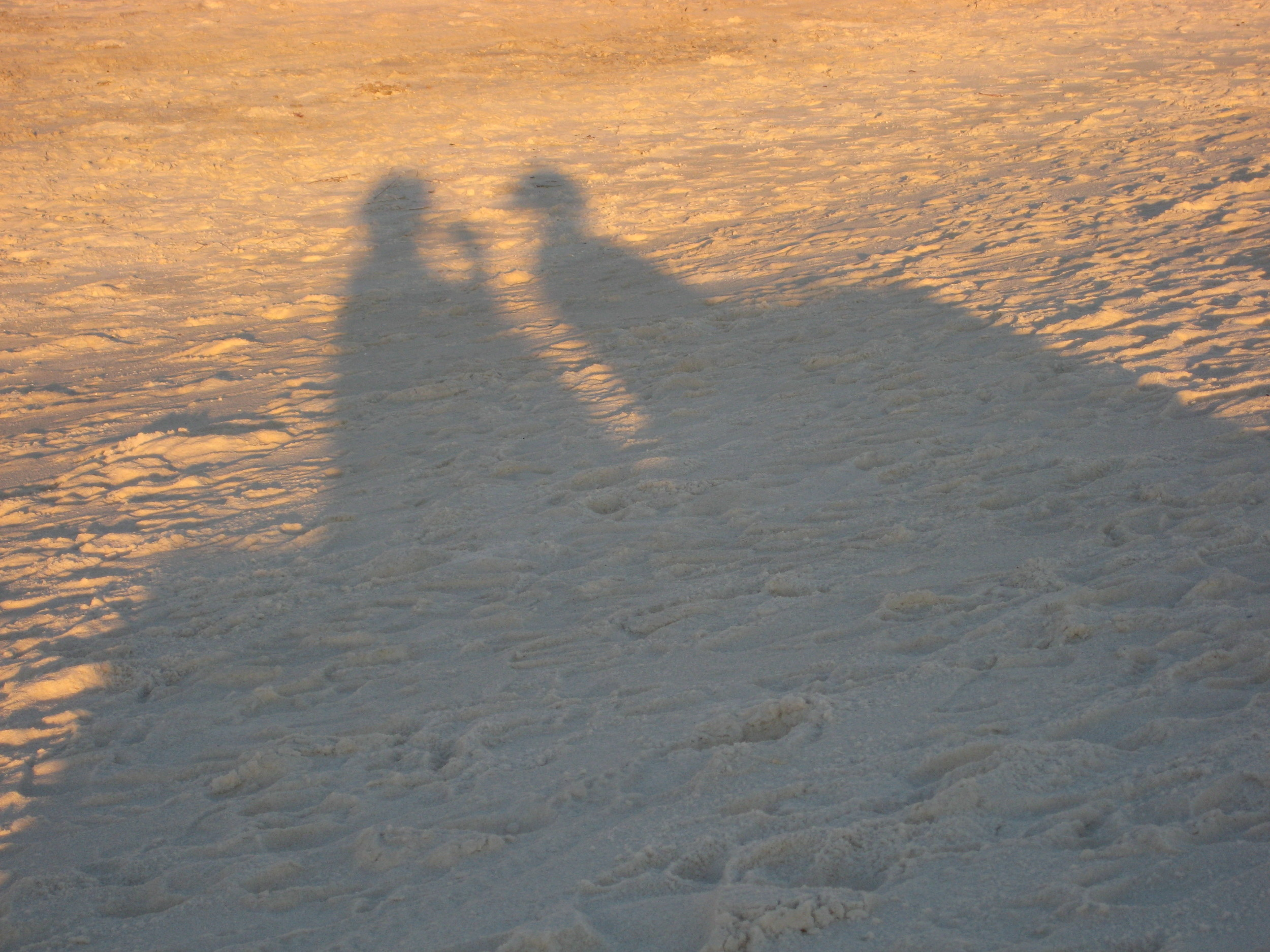 our shadows in the sand