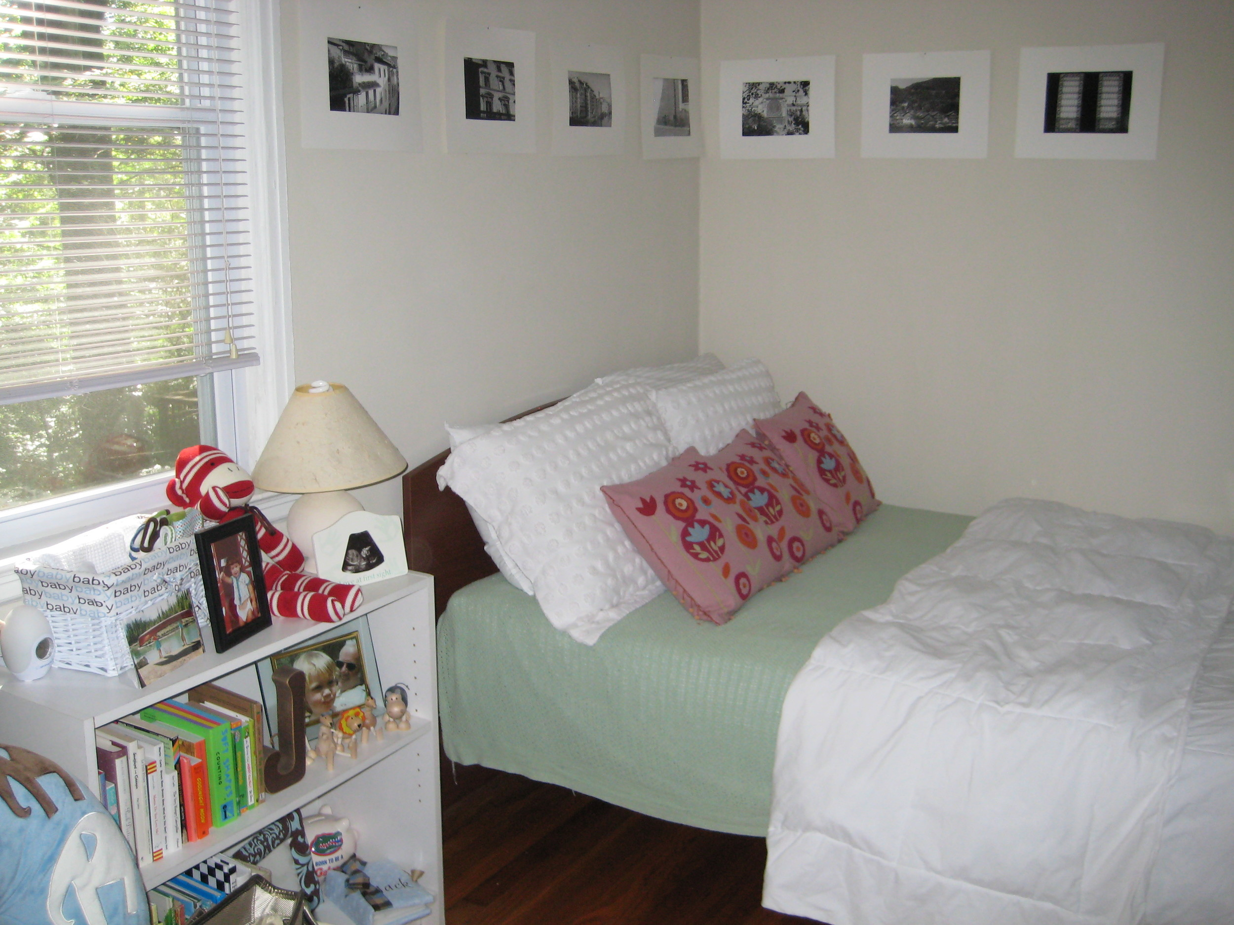 the book shelf and guest bed