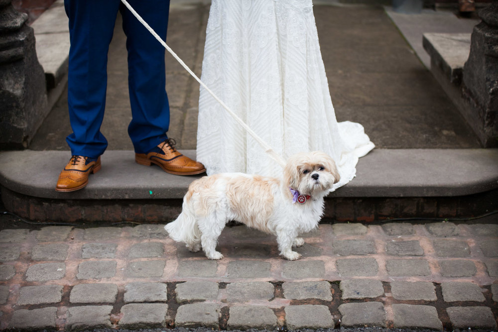 Dogs at weddings Pendrell Hall