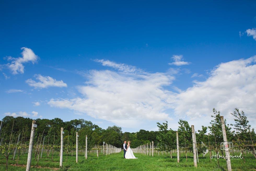 Barn-Wedding-in-somerset-570.jpg