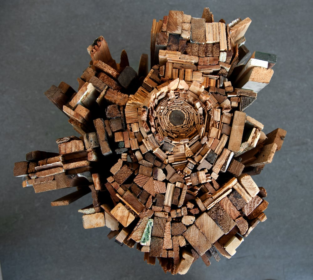 """Taproot    discarded wood, top view, h 2' x w 24"""""""