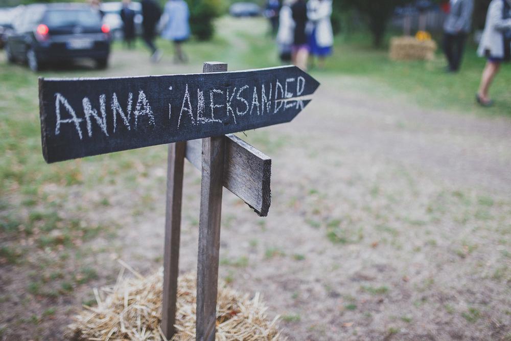 Ania i Alek-452.jpg