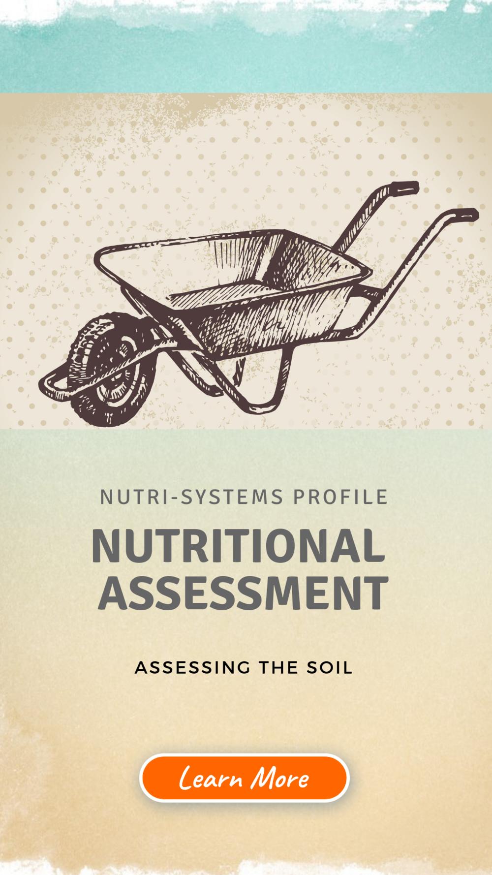 IG Story - NSP Nutritional Assessment.png