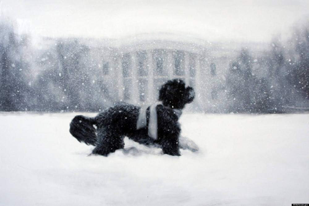 2012 White House Christmas Card