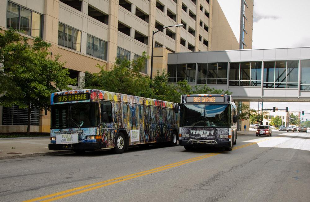buses together.jpg