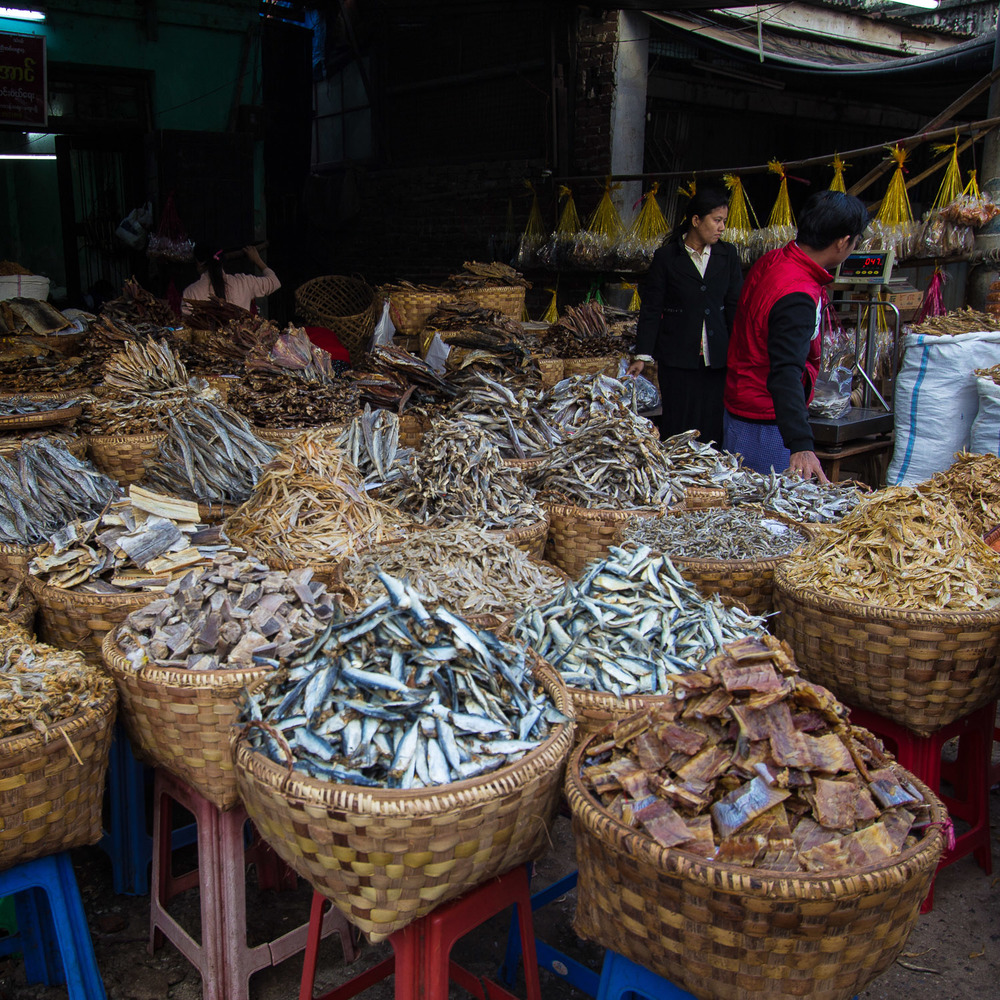 Dried Fish - so much dried fish!