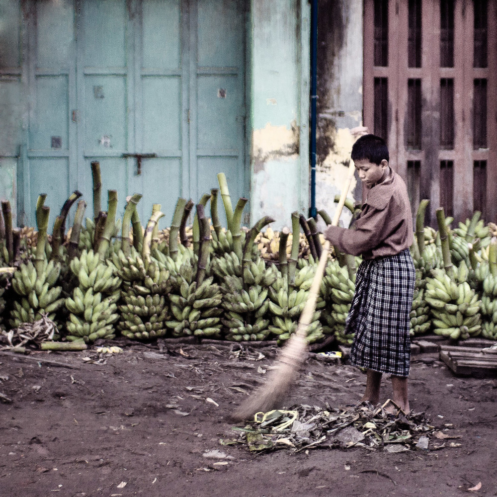 A young boy wearing a traditional longyi sweeps in the early morning in front of green bananas
