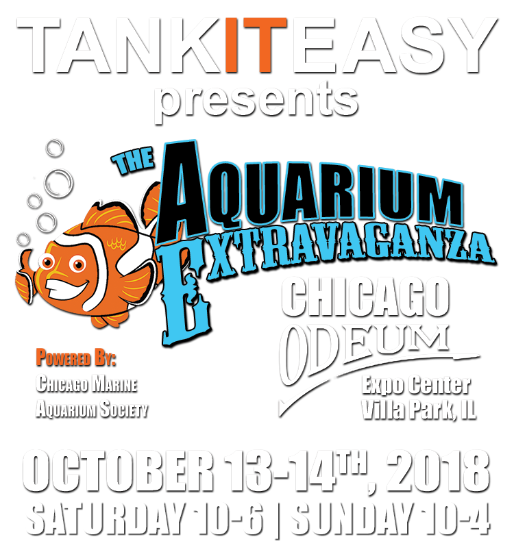 AquariumExtravaganzaWebsiteLogo.png