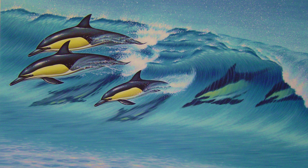 Swimming_with_Dolphins.png