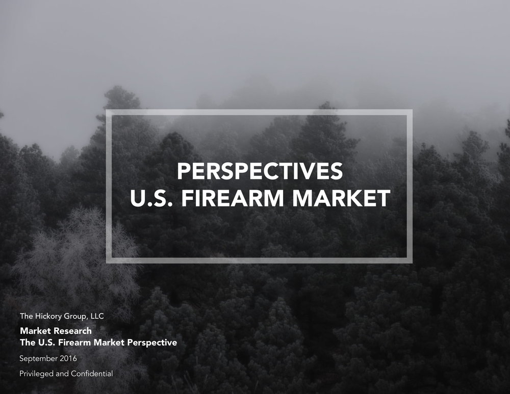 Perspectives Firearm Market (1)-01.jpg