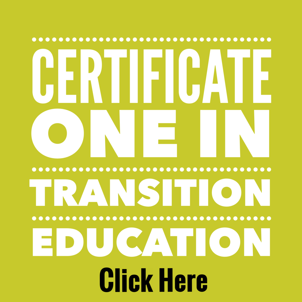 22301VIC Certificate I in Transition Education