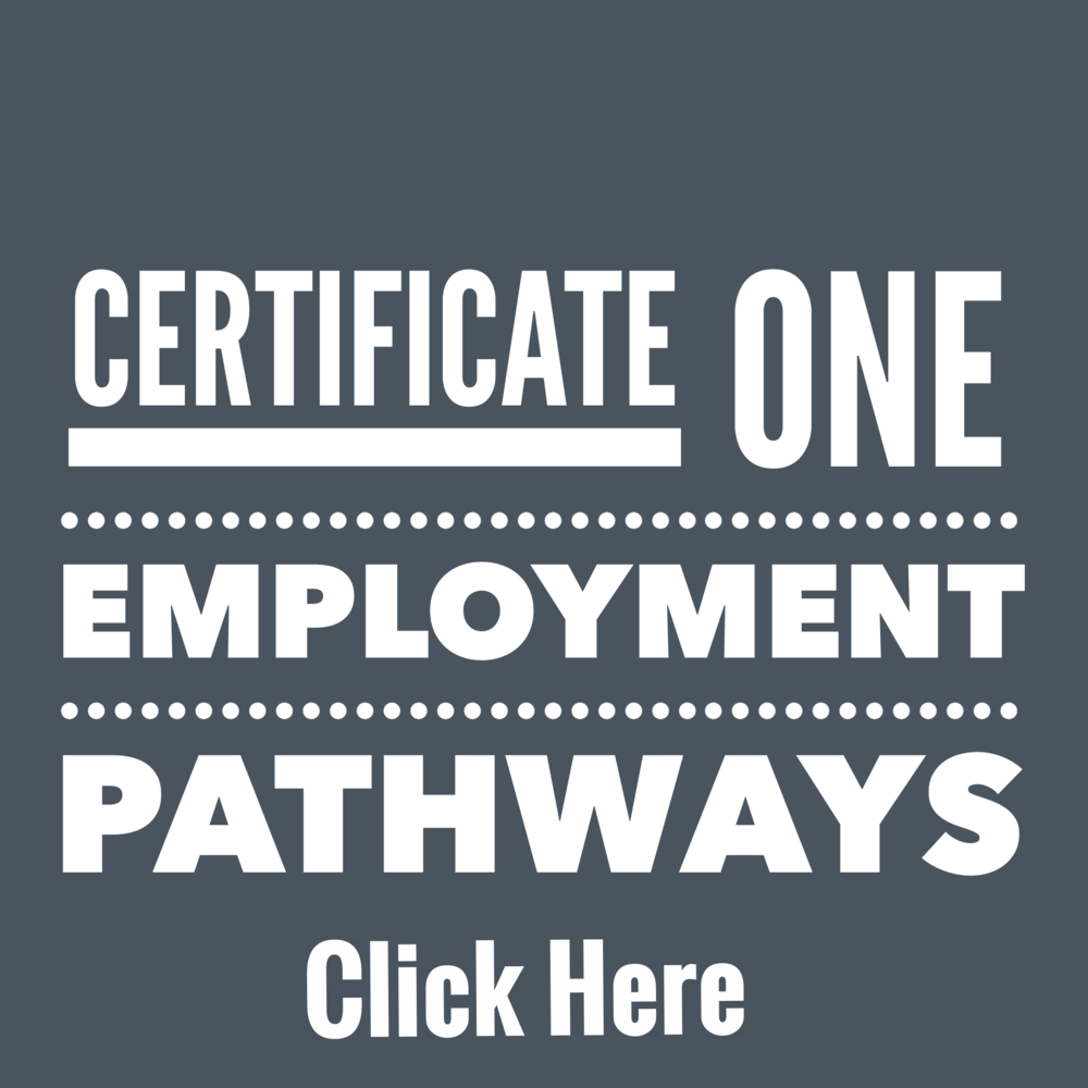 22280VIC Certificate I in Employment Pathways