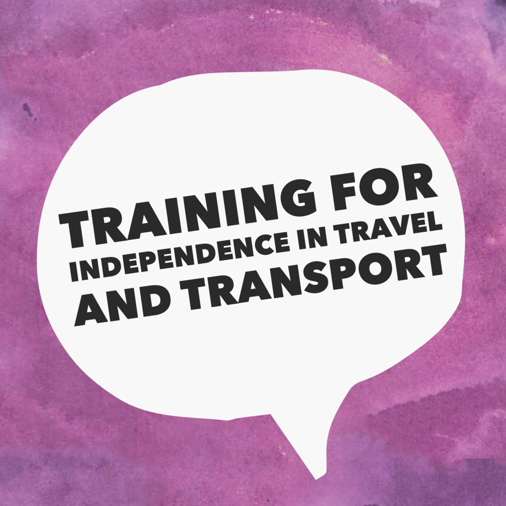 Training for Independence in Travel and Transport