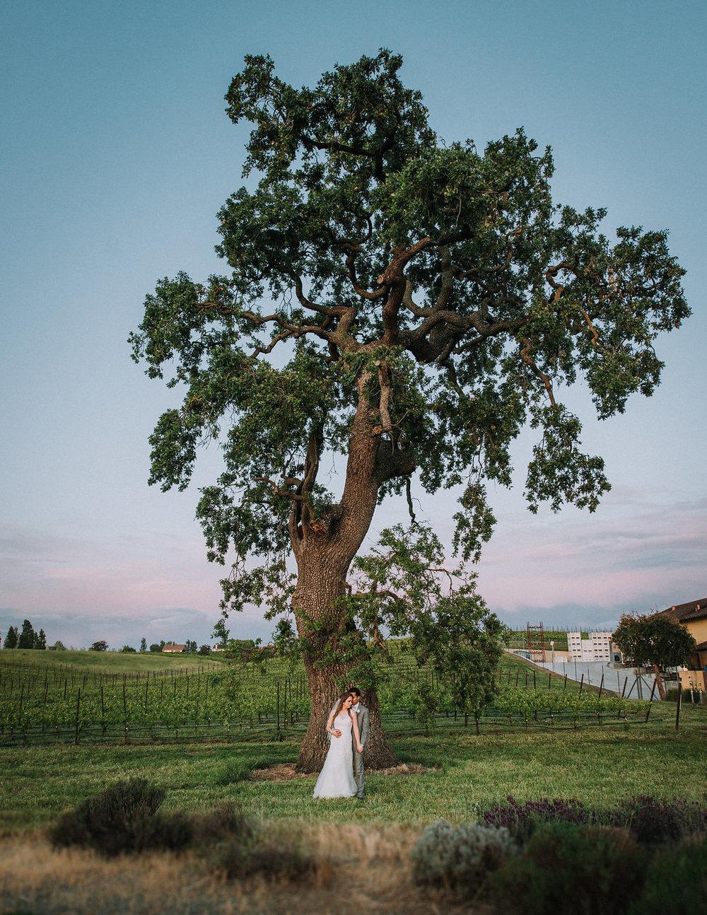 Santa Fe Wedding Photographer, New Mexico Wedding Photographer, San Francisco Destination Wedding Photographer, Santa Fe Destination Photographer, New Mexico Destination Photographer